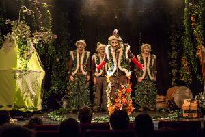 lutin, musicien, jongleur , acrobate, spectacle jeune public